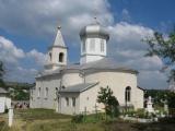 Manastirea Sireti